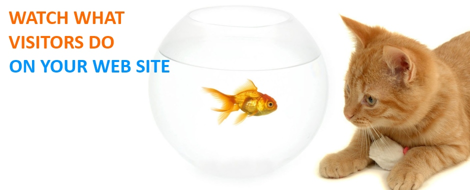 Watch what visitors do on your website